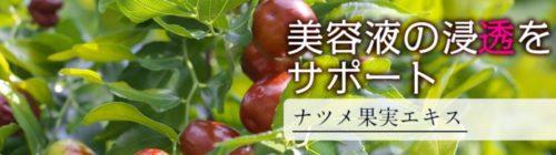 ナツメ果実エキス